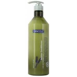 Kondicionierius pažeistiems plaukams Dancoly Aroma Conditioner Dry and Damaged hair 1000 ml