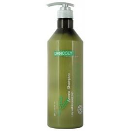 Šampūnas sausiems ir pažeistiems plaukams Dancoly Aroma Shampoo Dry and Damaged hair 1000 ml