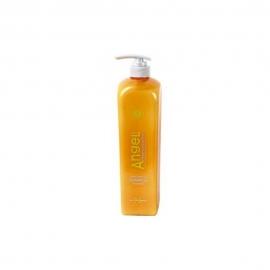 Šampūnas dažytiems plaukams Angel Marine Depth SPA Shampoo Coloured Hair 250 ml