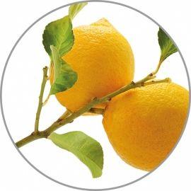 Medisana citrinų aroma esencija 10 ml