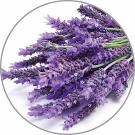 Medisana lavandų aroma esencija 10 ml