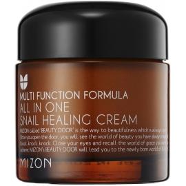 Daugiafunkcinis veido kremas All in One Snail Repair Cream Mizon MIZ000001790 su sraigių ekstraktu, 75 ml