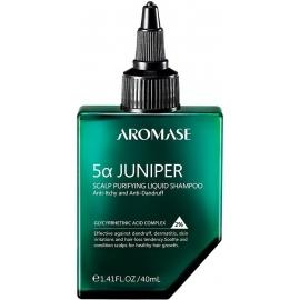 Valomasis plaukų šampūnas, 40 ml